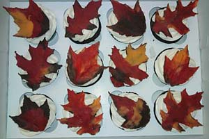 Chocolate Leaf Cupcakes