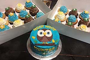 Owl Cake & Cupcakes